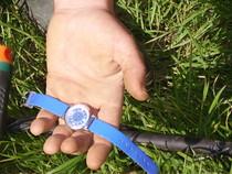 recherche bijoux perdus, montres,métaux,détection sur terrains,monnaies, pièces,détecteur de métaux